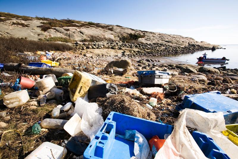 Müllmeer