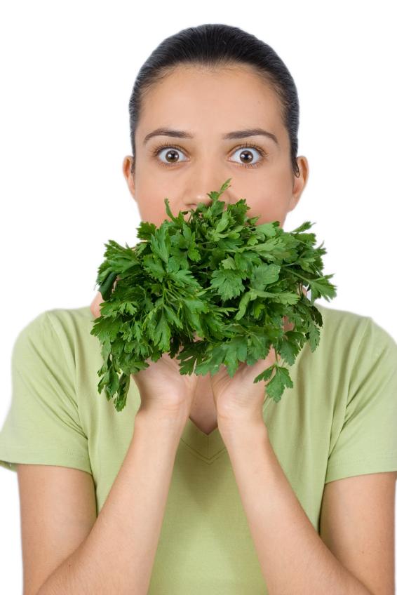 Petersilie überlagert schlechten Atem und ist ein natürliches Mittel gegen Knoblauchgeruch.