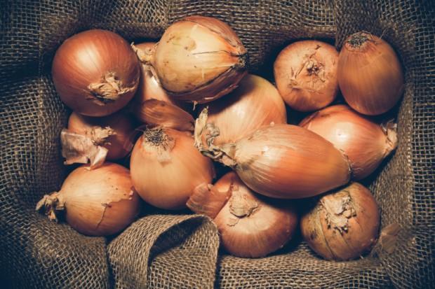 Die entzündungshemmende und schleimlösende Wirkung der Zwiebel macht sie zu einem Klassiker unter den Hausmitteln.