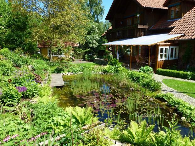 Läd zum Entspannen ein: Der Teich mit prachtvollen Seerosen und allerrlei tierischen Besuchern.
