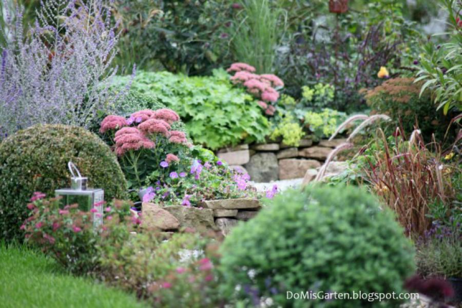 Gartenjahr 2014 (35)