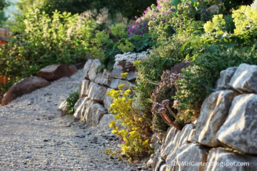 Pflanzenwege im Garten