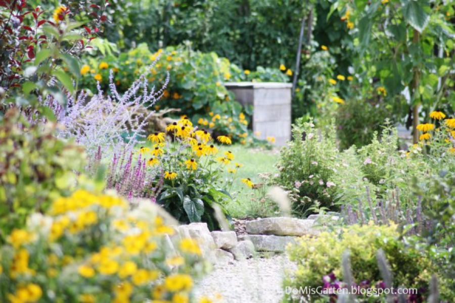 Gartenjahr 2014 (17)