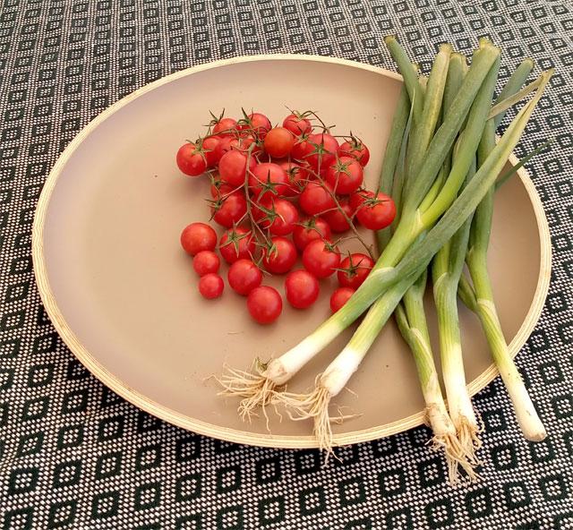 Eigene Tomaten und Frühlingszwiebeln