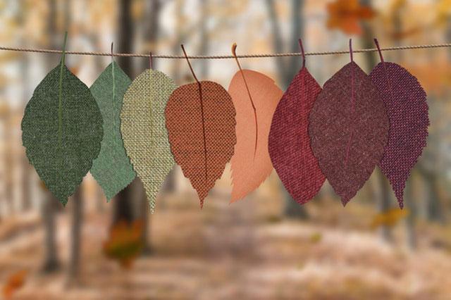 Herbstdeko selber basteln