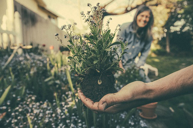 Garten Wohlfühloase