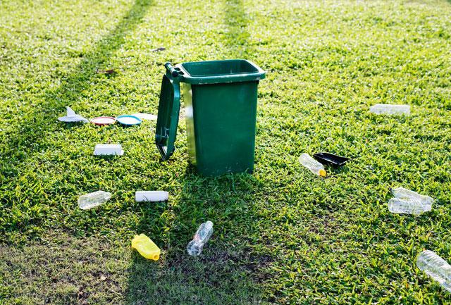 Müll richtig entsorgen