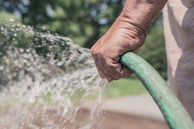 5 Tipps richtige Gartenpflege