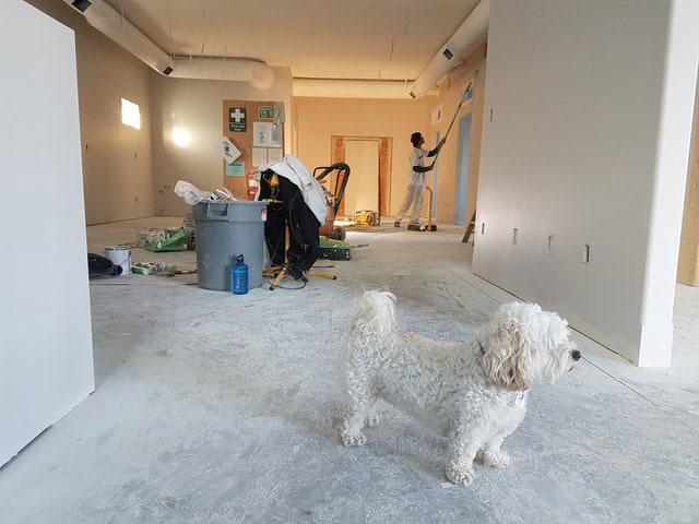 Haus sanieren Möglichkeiten