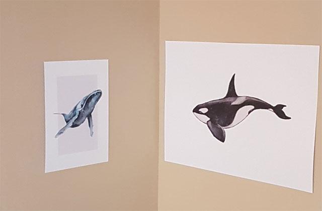 Wale Kinderzimmer Poster