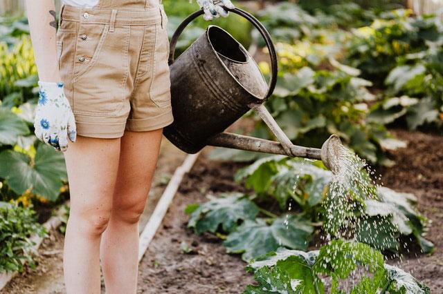 Konzept Urban Gardening